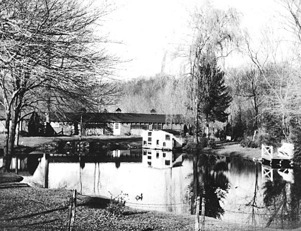pond-bw600