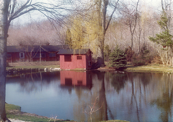 pond1-600